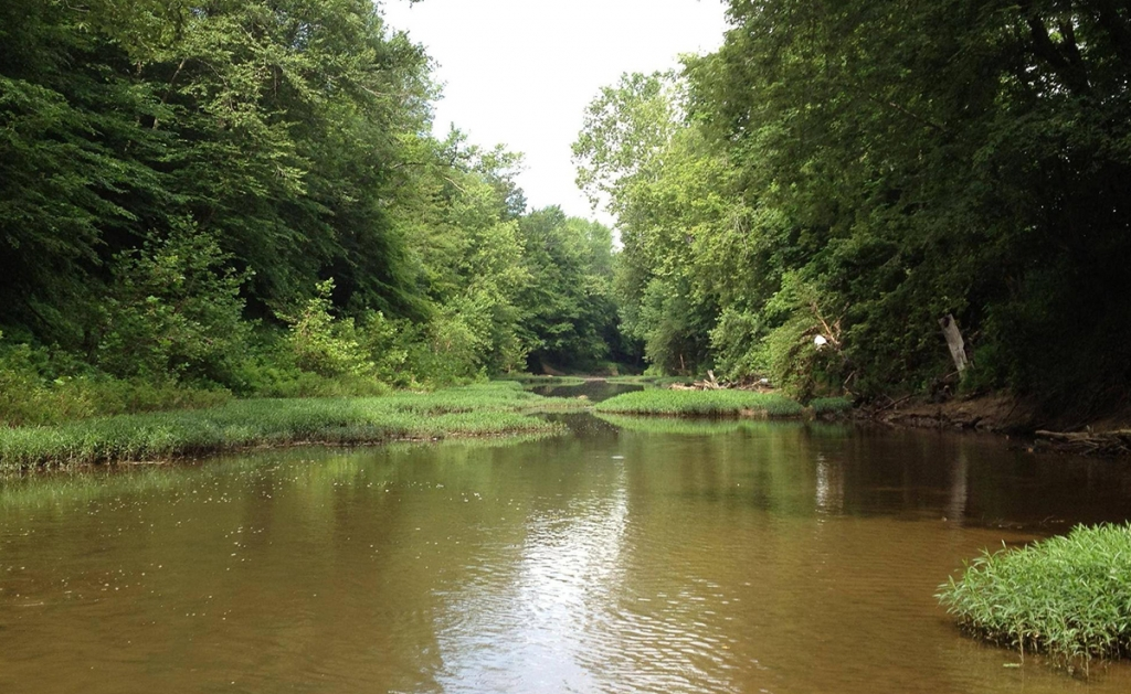 little_scioto_river