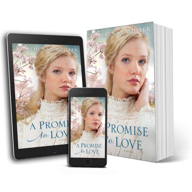 A Promise to Love (Book 3)